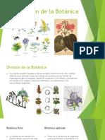 División de La Botánica