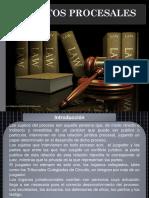 Presentacion Sijetos Procesales Rev