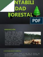 CONTABILIDAD FORESTAL -abril  2019.pptx