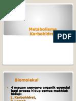 Metabolisme karbihidrat.pptx