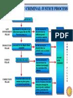 PCJS Process