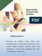PERSALINAN NORMAL.pptx