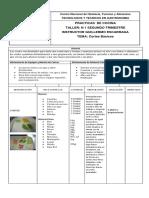 Ficha Tecnica Cortes Basicos