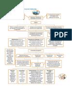 Flujograma Plan de Formacion ACT 8 Docx