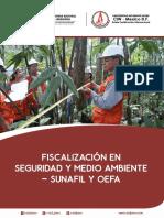 Fiscalizacion en La Seguridad y Medio Ambiente - Sunafil y Oefa Dossier 0