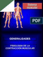 5-09-2016 El Sistema Muscular 1