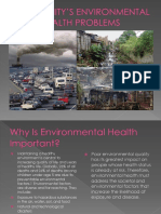 Community's Environmental Health Problems
