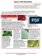 Raspberry IPM Newsletter - August 2 2019