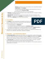 Resumenes x temas cnaturales 5 primaria