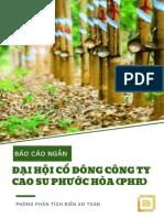 PHR- Short Report - 20190326