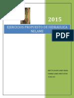 Ejercicios Propuesto Del Dpto Hidraulica Nelame 09042018