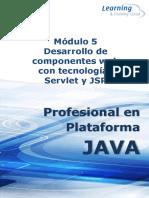 PDF M5 JAVA