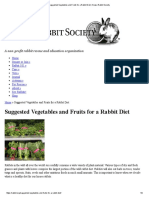 Suggested Vegetables and Fruits for a Rabbit Diet _ House Rabbit Society