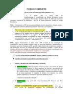 1. PODER CONSTITUINTE.docx.docx