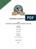 firma digital OFICIAL.docx