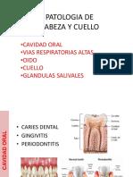 4 Dra Rodriguez Cabeza y Cuello