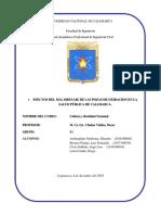 INFORME CULTURA.docx