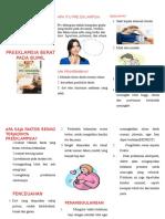 257393832-Leaflet-Peb.doc