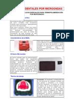 Protesis Micro