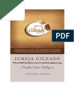 IGREJA GILEADE, minha visão teológica