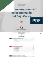 Anexo 2.5 Perfil BajoCauca_Oct14