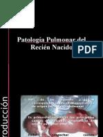 Patología Pulmonar del RN