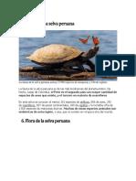 Fauna de La Selva Peruana