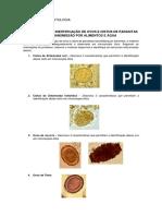 2019528_85531_Aula+1+-+Detecção+de+ovos+e+cistos+de+parasitas.docx