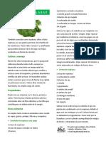 Espinaca-Malabar.pdf
