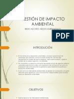 Gestión de Impacto Ambiental
