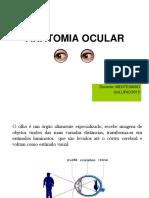 Anatomia Do Olho Aula 1