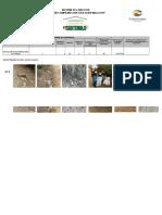 Formatos Informe Campaña Limpiemos Nuestra Guatemala Director(a) Centro Educativo Primaria