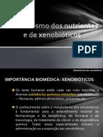 7 Bioqumica Metabolismodosnutrientesedexenobiticos Selma 131027183049 Phpapp02