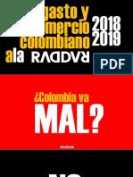 Como Va El Comercio y El Gasto a La Colombiana y Como Va a Seguir 2017-2022 - Exito - Mercadeo - Febrero de 2019