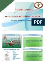 15. Aparato Digestivo de Aves