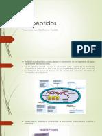 Polipéptidos