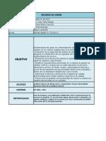 Realización de La Auditoría Interna28