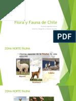 Flora y Fauna de Chile PPT