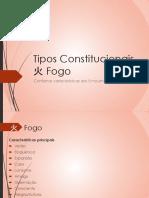 Tipos Constitucionais Fogo