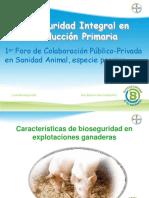 Bayer- Ana b. Garcia72