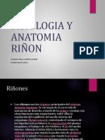 Anatomia Y Fisiologia Renal.pptx