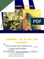 5.Cannabis
