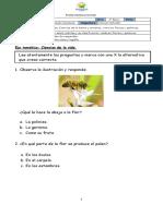 Diagnóstico Cs. Naturales  tercero basico.docx