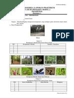 3. bimbingan format ekosistem.docx
