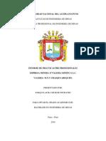 Informe Universidad Nacional Del Altiplano