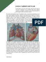 Notas de Cardiología Necroman