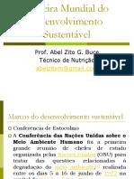 Aula 5 Cimeira Mundial do desenvolvimento Sustentável.pptx