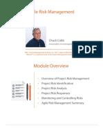 2 Pmi Acp Agile Estimation Metrics Risk m2 Slides