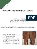 Tema 61.- Enfermedades Musculares Copia 2