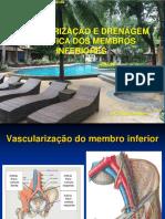 26-04 Vascularização e Drenagem Linfática Do Membro Inferior